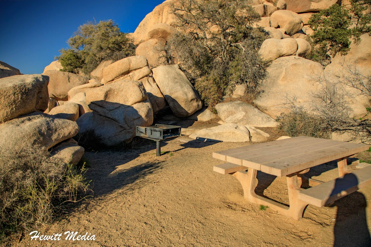 Joshua Tree National Park-1071