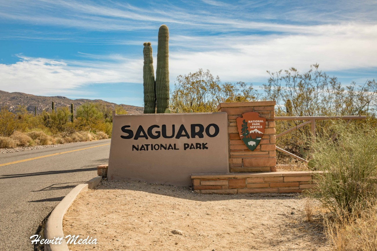 Saguaro National Park-5962