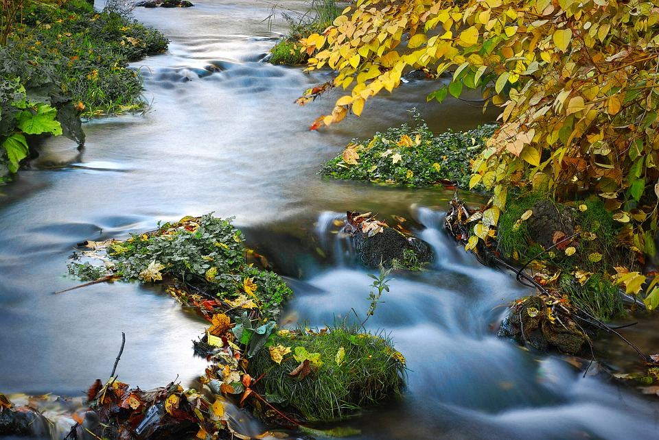 racawka-valley-1276195_960_720.jpg