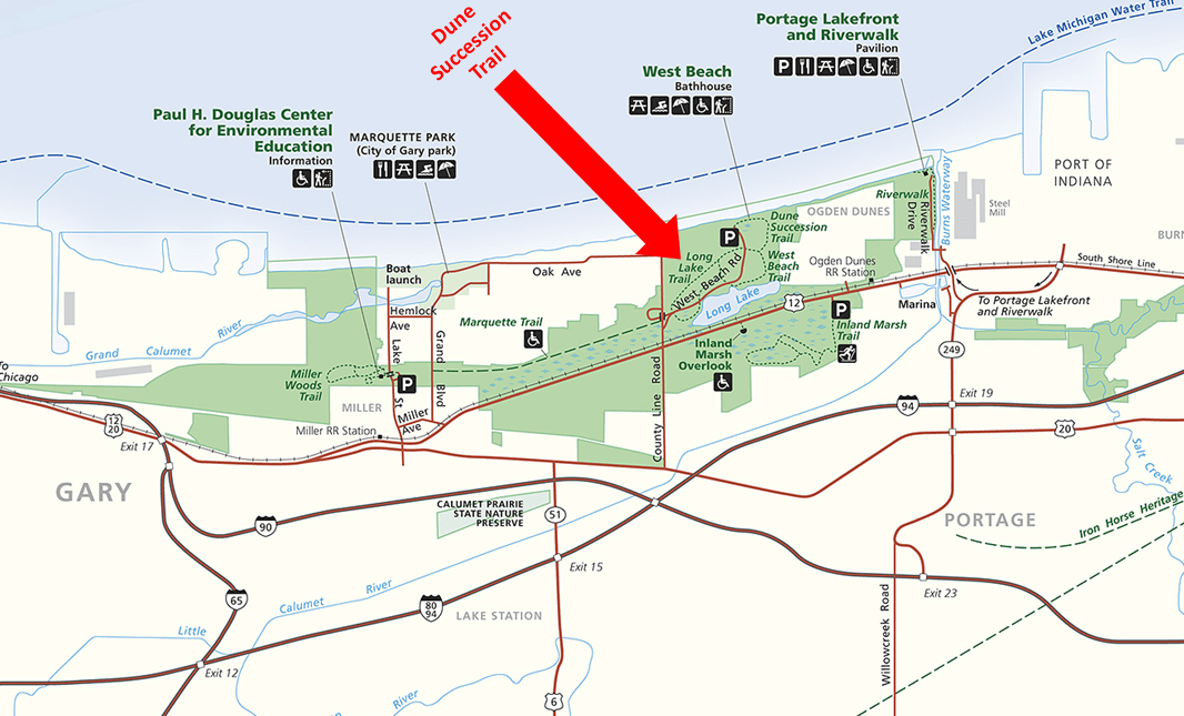 Indiana Dunes - Dune Succession Trail Map