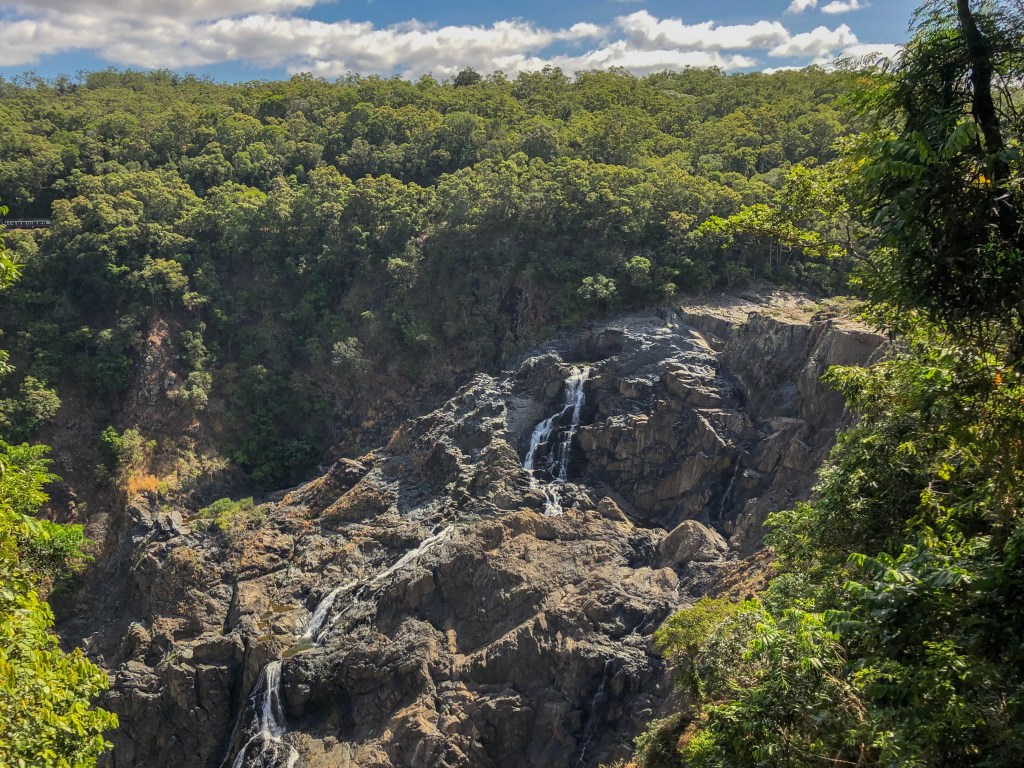 Travel Journal (9/21/2019): Kuranda and the Rainforest