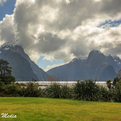 A View of Milford Sound