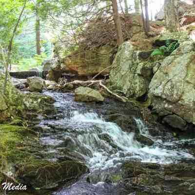 Stream near the Bubble Pond