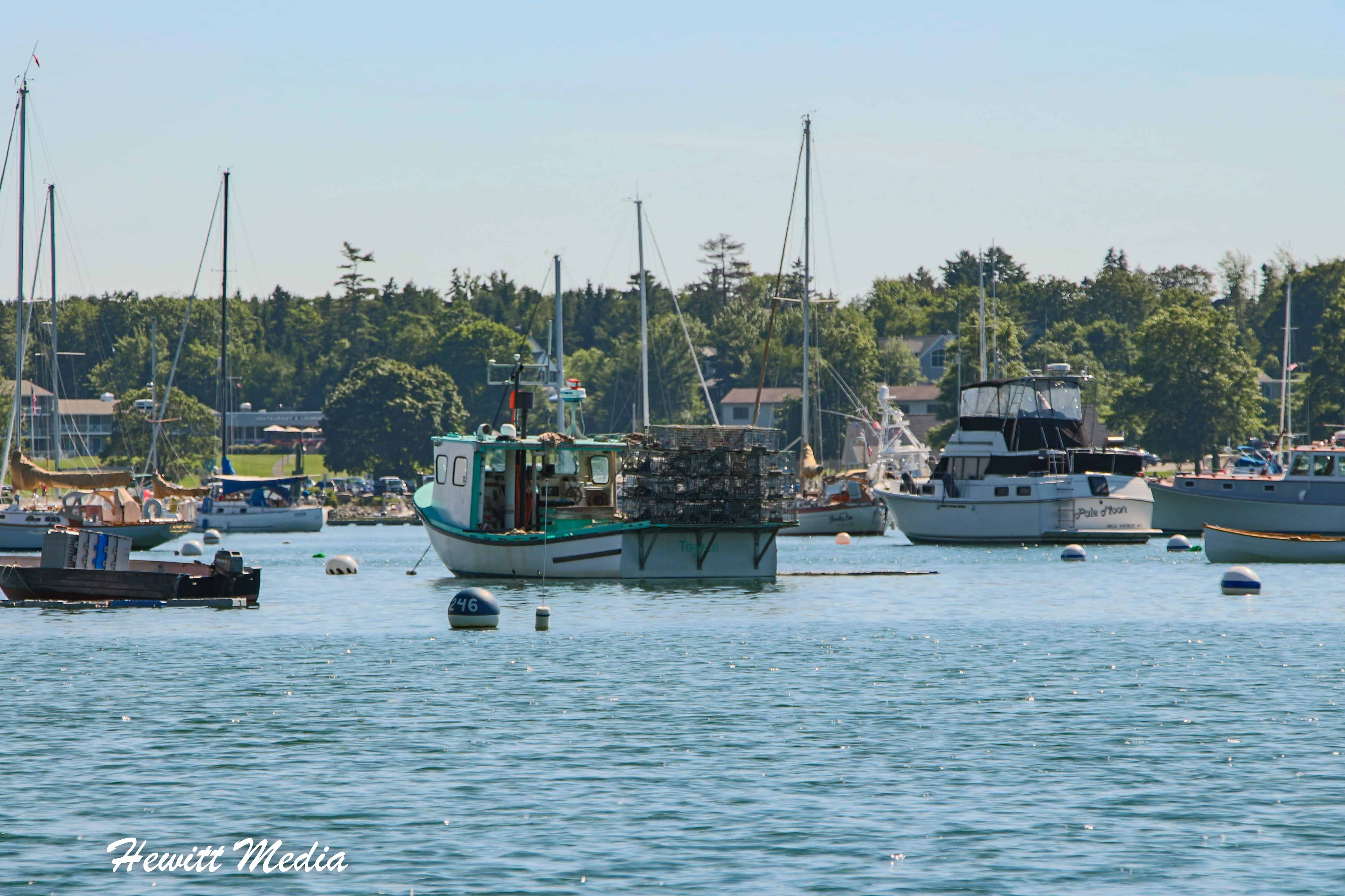 The Bar Harbor Area