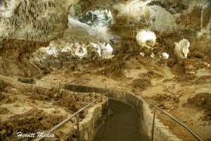 Carlsbad Caverns National Park Visitor Guide