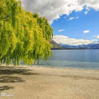 The beach at Lake Wanaka