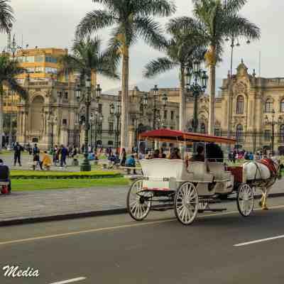 Lima-8235