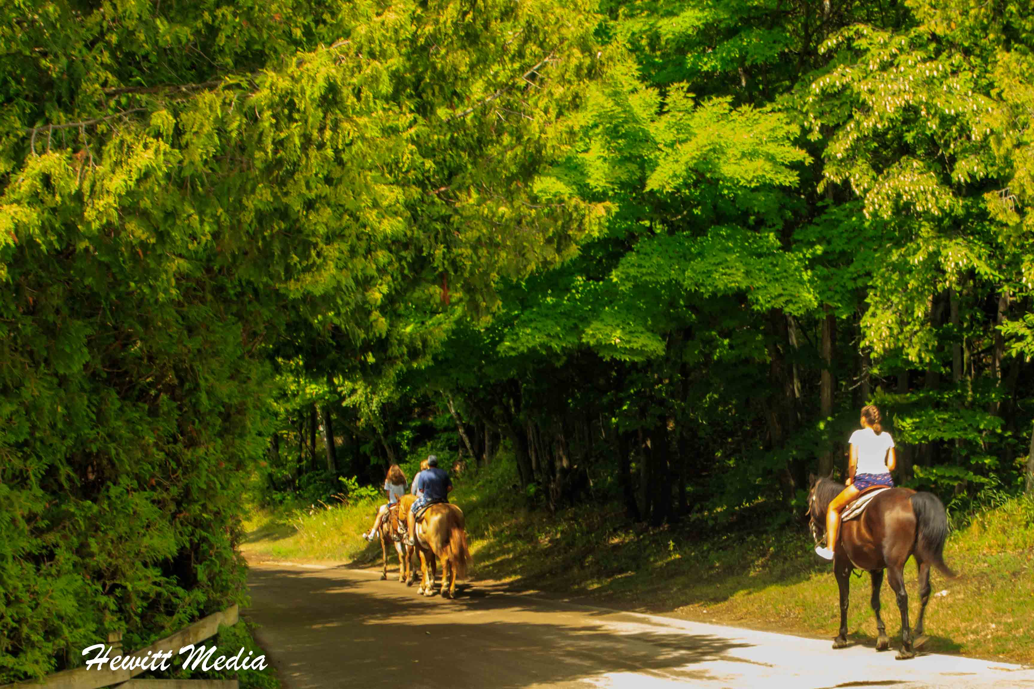 Horseback Riding on Mackinac Island