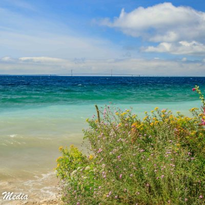 The Beautiful Shoreline of Mackinac Island