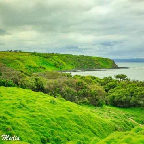 Philip Island-3104