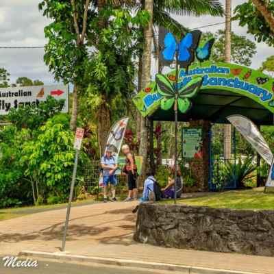 Kuranda Rainforest-2351
