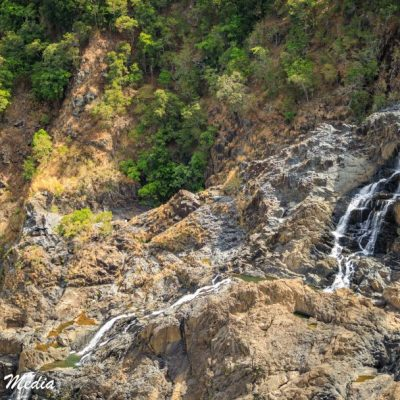 Kuranda Rainforest-2425