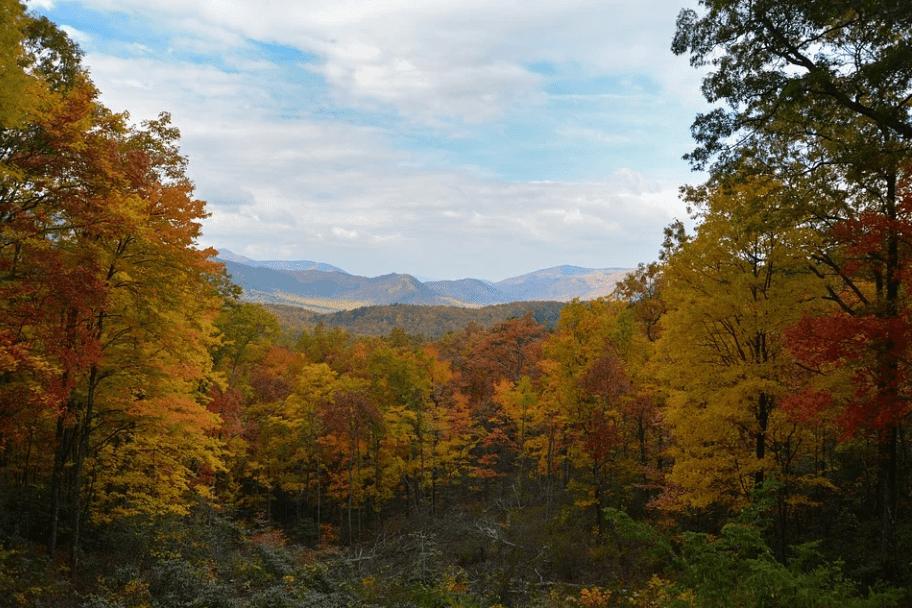 Great Smoky Mountains National Park Autumn