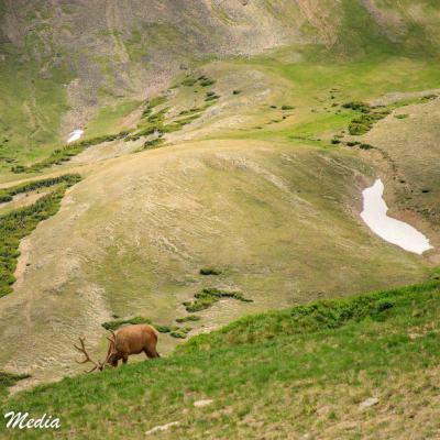 Rocky Mountain National Park-5795