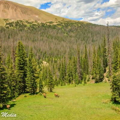 Rocky Mountain National Park-5826