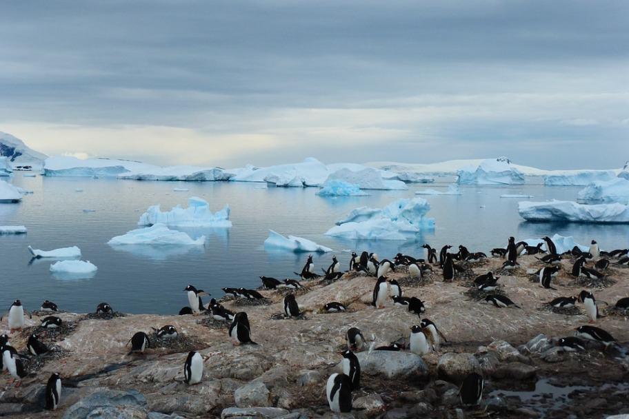 Travel Bucket List - Antarctica