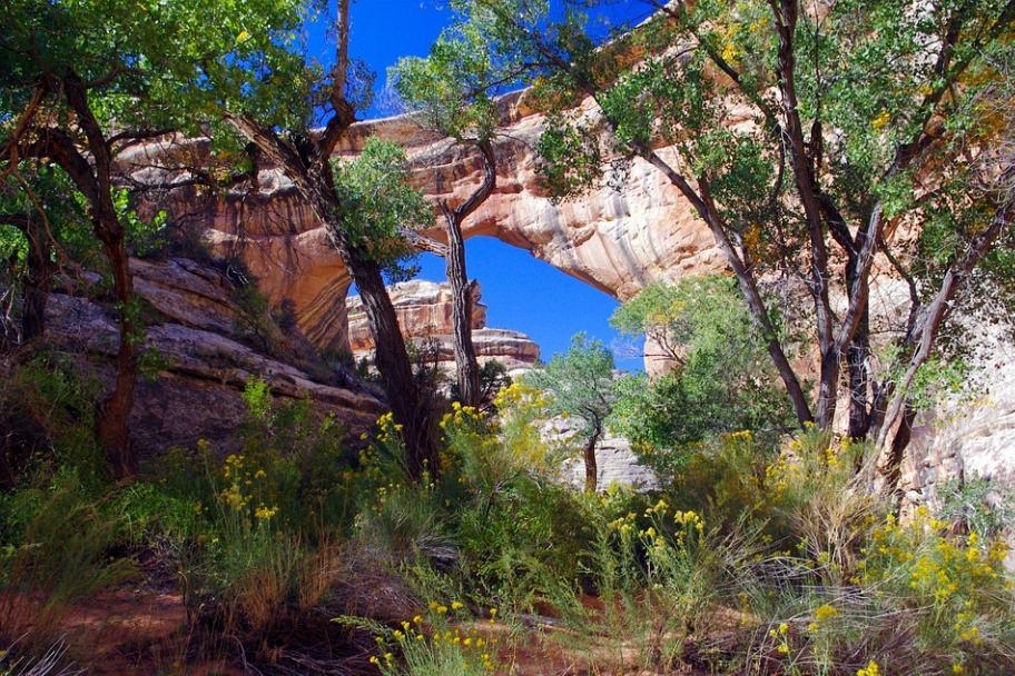 Southern Utah Attractions - Natural Bridges National Monument
