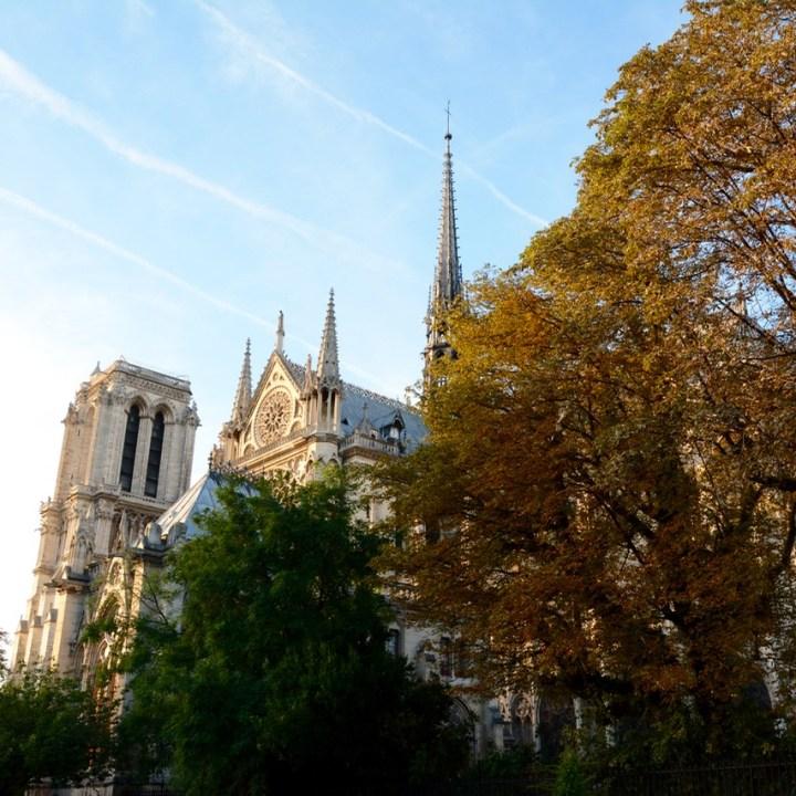 Paris France notre dame architecture cathedral