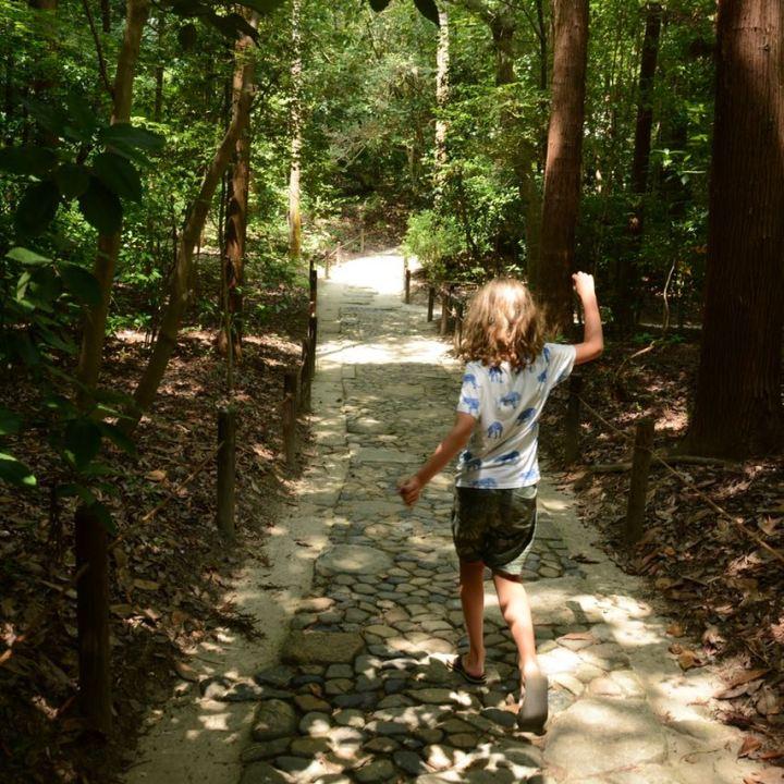 Okayama garden korakuen stone path