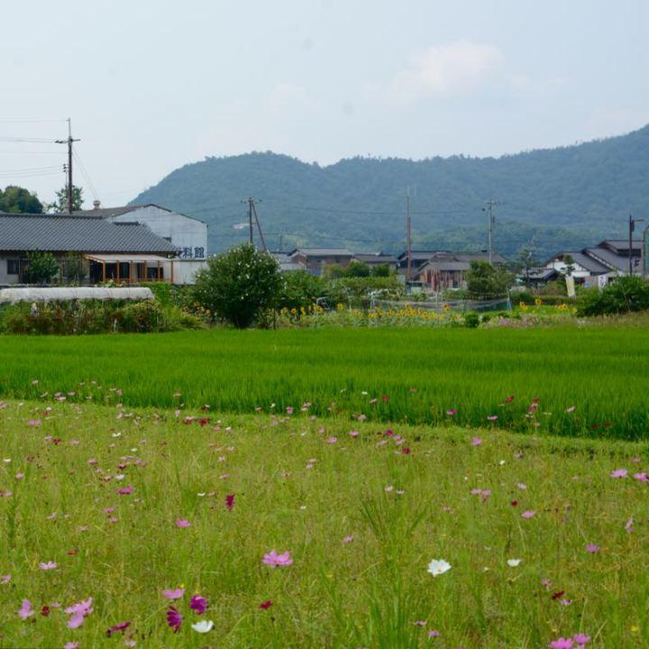 Kibi plain Bitchu Kokubun-ji temple area