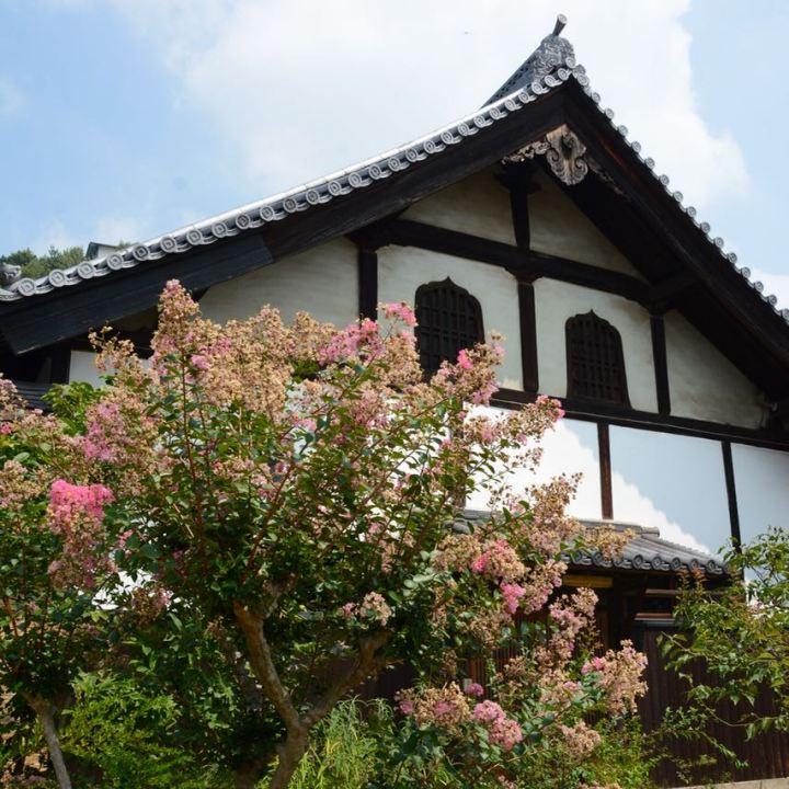 Onomichi temple walk flowers