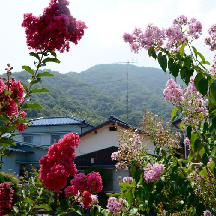 Innoshima shiamanami kaido yugejima architecture