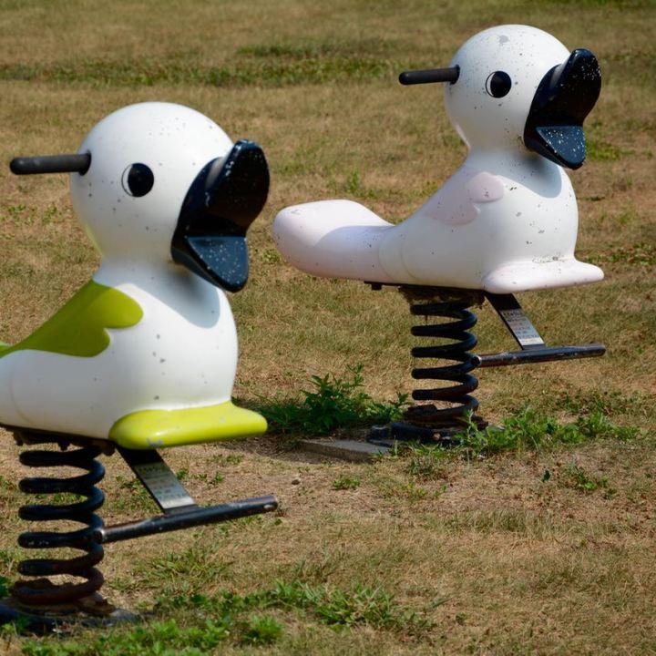 innoshima park playground birds