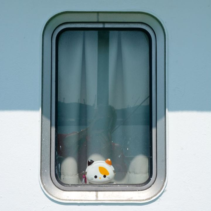 naoshima japan ferry blind passenger cat
