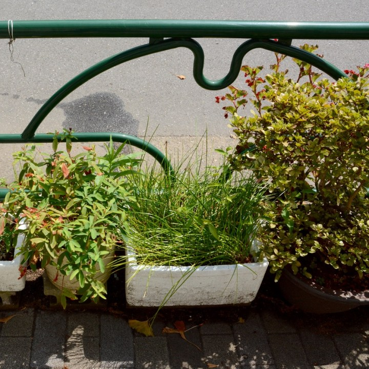 yanaka flower pots