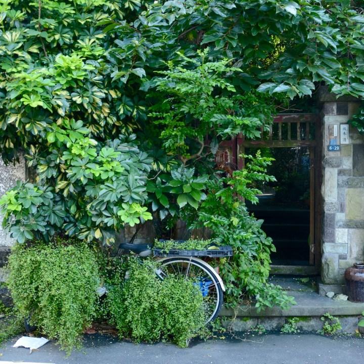 yanaka tokyo bike overgrown