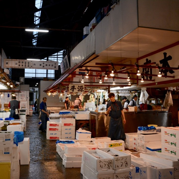Tsukiji tokyo fish market alley