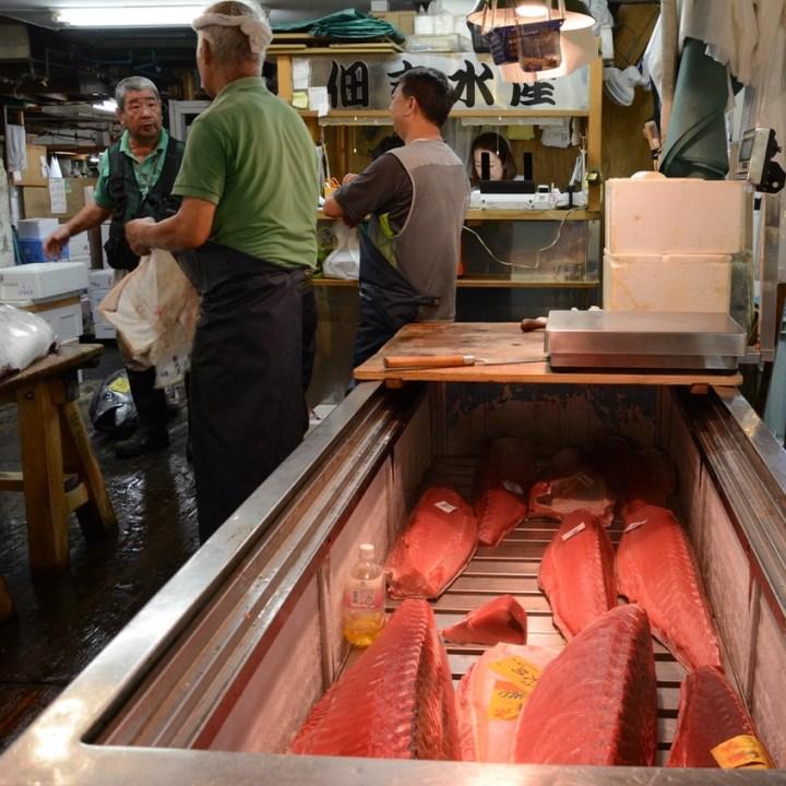 Tsukiji tokyo fish market tuna fridge