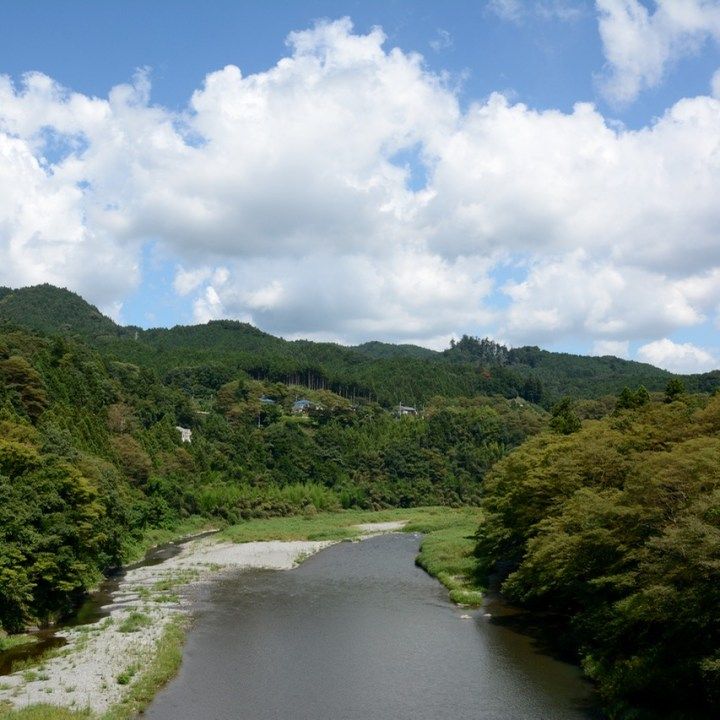 tama river cycling river