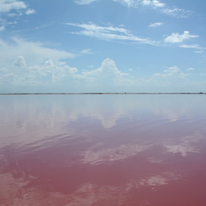 Las Coloradas, Mexico |The Wonderful Pink Salt Lakes of Las Coloradas