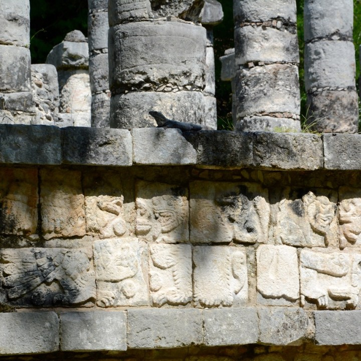 travel with children kids mexico chichen itza thousand columns iguana