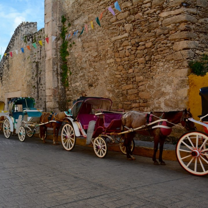 Travel with children kids mexico merida izamal horse carts