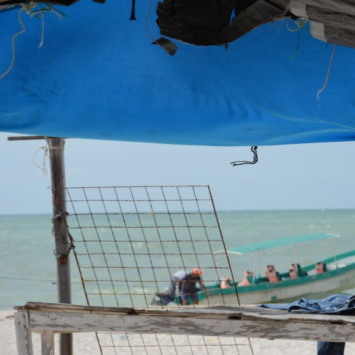 Travel with children kids mexico celestun beach boat tour