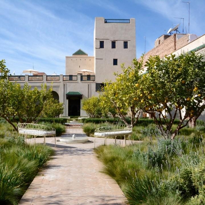 Travel with children kids Marrakesh morocco medina secret garden lemon grove