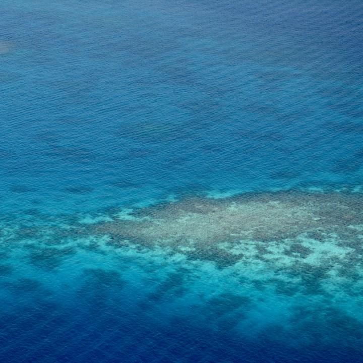 travel with children kids maldives lux south ari atoll reef
