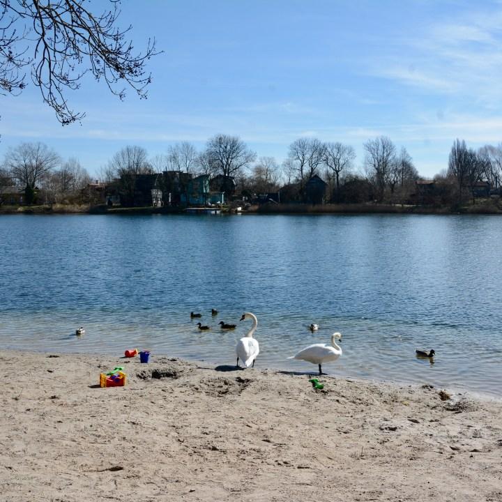 travel with kids children copenhagen denmark christianshavn beach