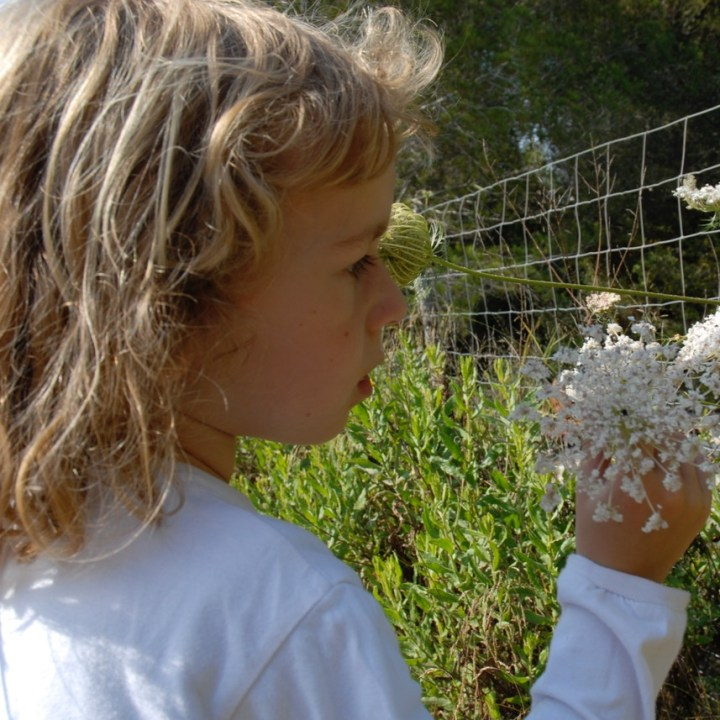 travel with kids children Soller Mallorca Spain hiking exploring nature