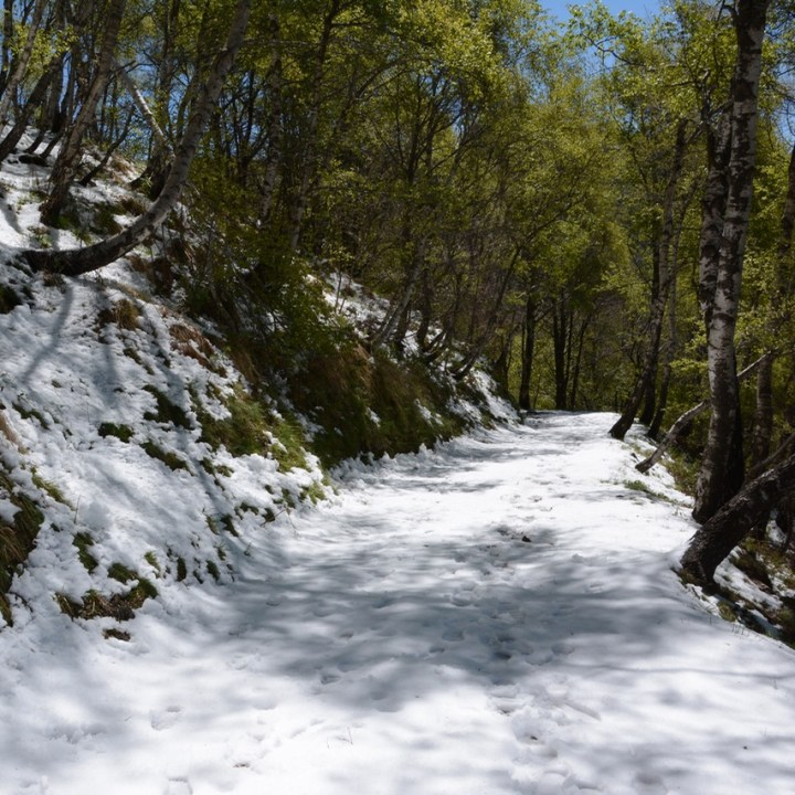 travel with kids children mount spalavera lago maggiore hiking snow covered path
