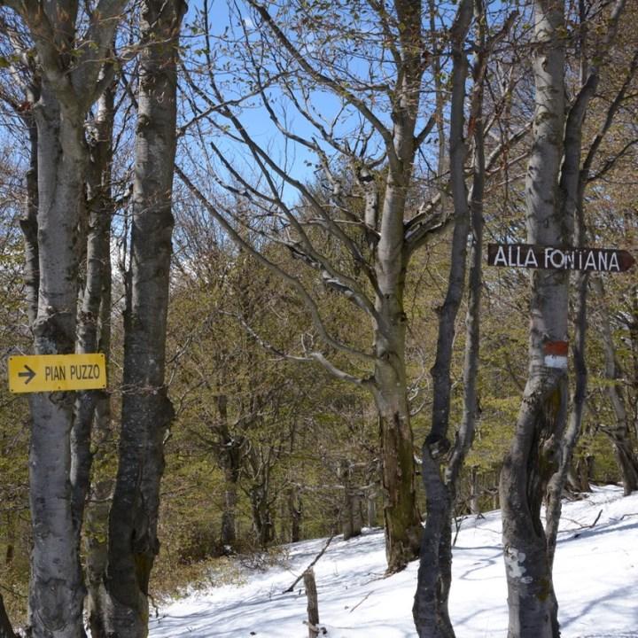 travel with kids children mount spalavera lago maggiore hiking path pain puzzo