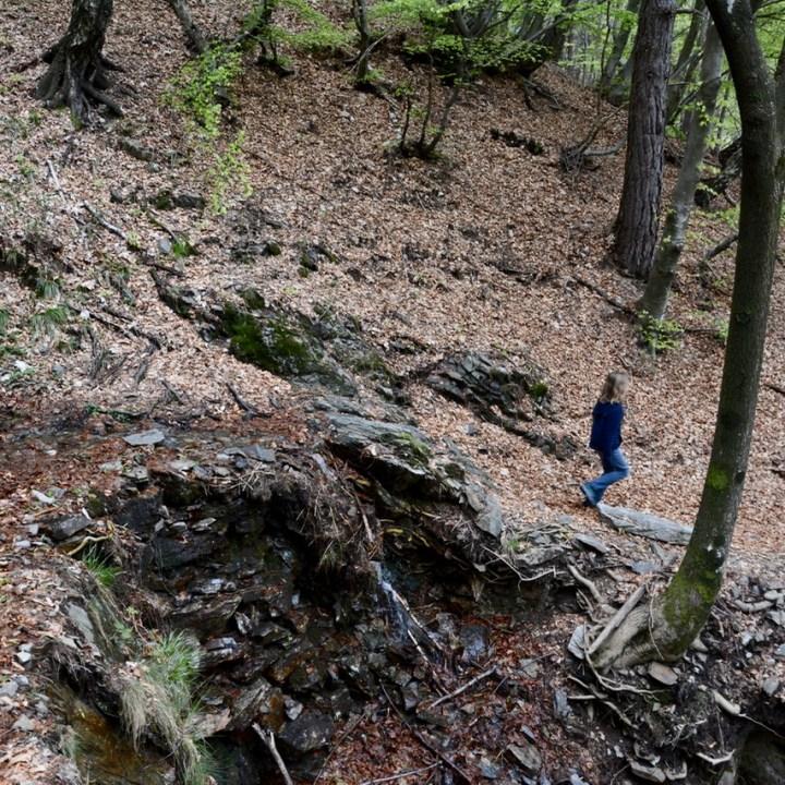 travel with kids children mount pian bello lago maggiore italy hiking downhill