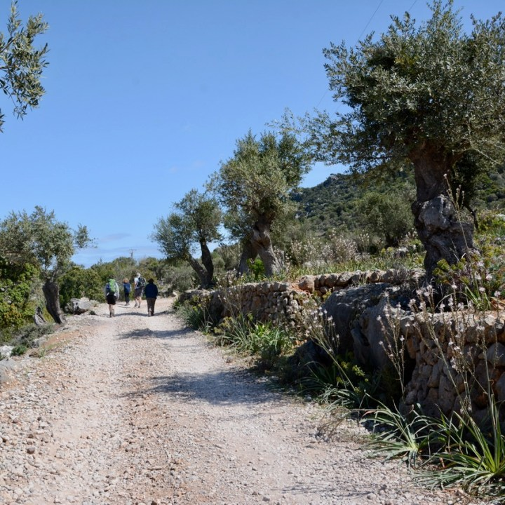 travel with kids children soller mallorca spain hiking cala tuent road