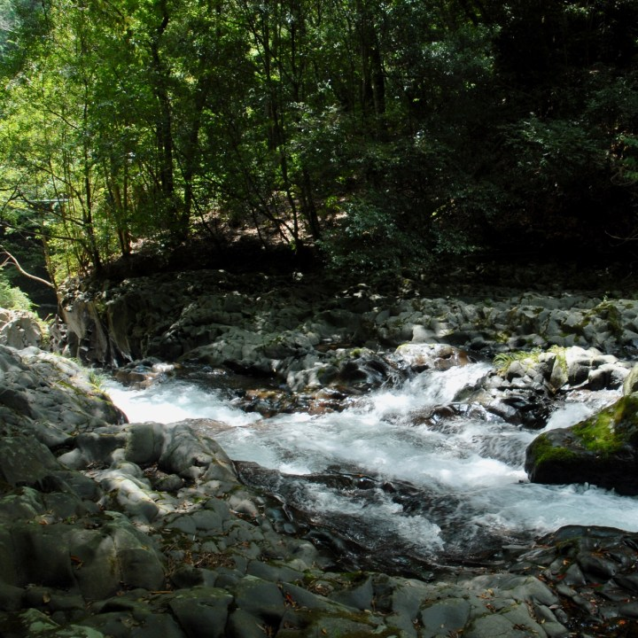 shimoda japan with kids kawazu seven waterfall ravine