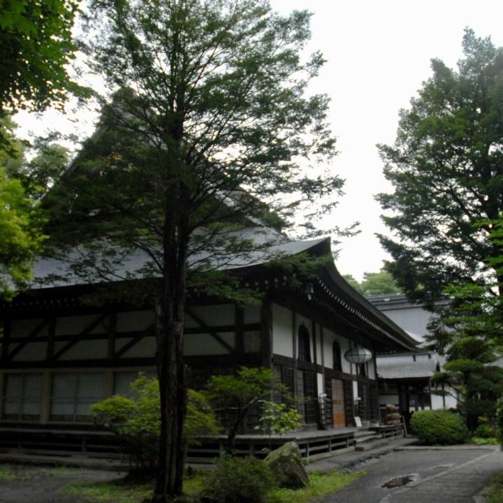 tokai nature trail with kids temple