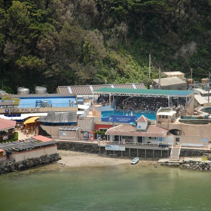 shimoda with kids izu peninsular marine stadium