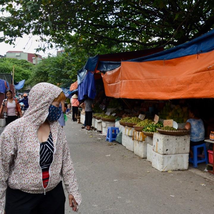 travel with kids vietnam hanoi citrus fruit