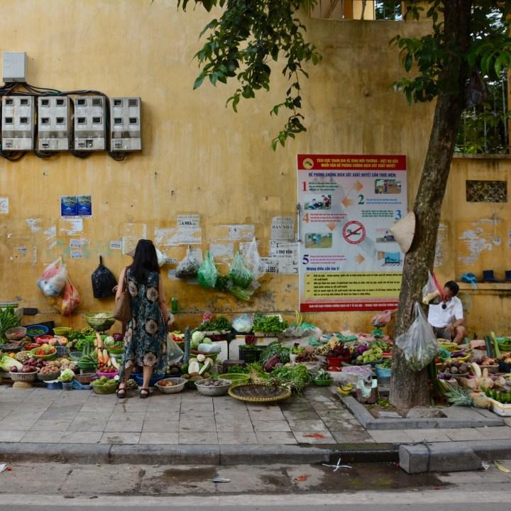 travel with kids vietnam hanoi fruit